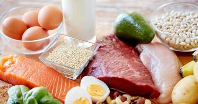 2) Kaya Akan Protein