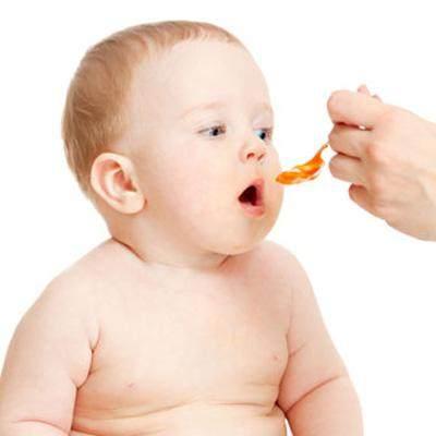 4. Beri Makan Secara Berkala