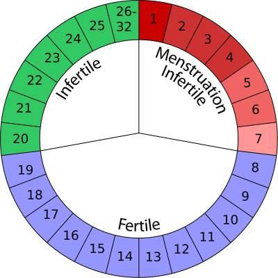 Kenali Masa Menstruasimu