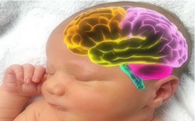Menghambat Perkembangan Otak Janin