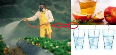 4. Ibu Terpapar Pestisida