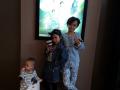 Anak Beruang Nyanyi di Bioskop