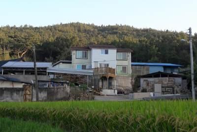 Prolog : Hey, Aku di Negeri Ginseng