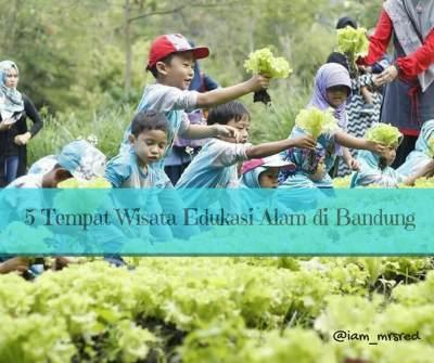 Belajar Berkebun dan Bertani untuk Anak, Kunjungi 5 Tempat Wisata Edukasi Alam di Bandung Ini