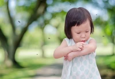 Ngeri! Ketahui Penyakit Karena Gigitan Nyamuk Selain Demam Berdarah