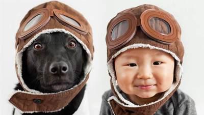 Bayi Bershio Anjing, Bagaimana Karakternya?
