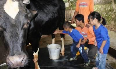 Seru Banget! Rekomendasi Tempat Bermain Anak di Depok yang Wajib Dikunjungi