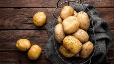 Meskipun Praktis, Ternyata 6 Bahan Makanan ini Tidak Baik untuk Diblender!