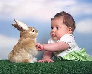 #FORUM Mengajari anak untuk menyayangi hewan?