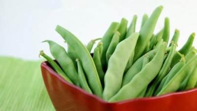1. Finger Food