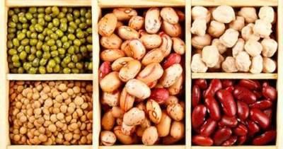 Biar Tak Rentan Sakit, 5 Makanan Ini Ampuh untuk Meningkatkan Sel Darah Putih
