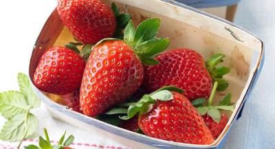 Makanan Pencegah Kanker yang Mudah Ditemukan Sehari-Hari