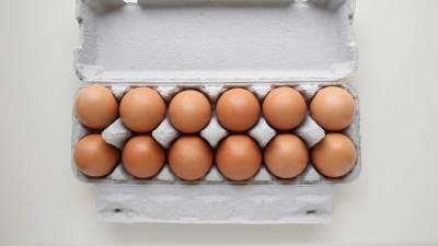 Selain Telur Ayam, Ini Dia 4 Jenis Telur yang Bisa Dikonsumsi dan Kaya Gizi