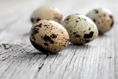 2. Telur Puyuh