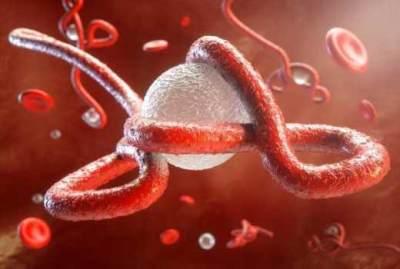 Penting, Moms! Ini Gejala, Penyebab dan Pencegahan Virus Ebola