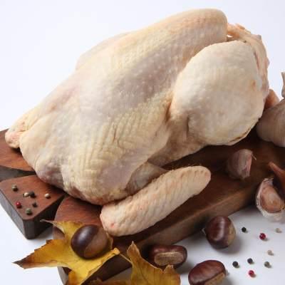 Cooking Moms: Tips Mengolah Daging Bebek yang Benar Agar Empuk dan Tidak Bau