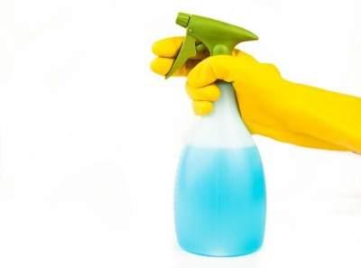 Nih Moms, Cara Efektif Membasmi Rayap di Rumah!