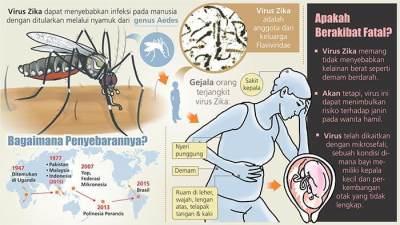 Wajib Tahu Moms, Ini Dia Bahaya Virus Zika Pada Ibu Hamil dan Janin