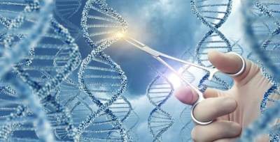 Terapi Stem Cell, Pro atau Kontra?