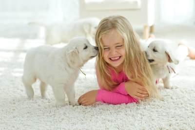Patut Dicoba, Memelihara Binatang Di Rumah Ternyata Memberi Dampak Positif Bagi Anak, Lho