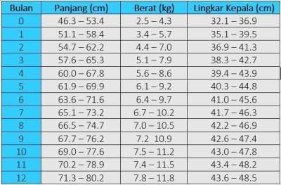 Tabel berat badan bayi laki laki