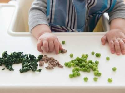 Gambar Tekstur Makanan Bayi 8 Bulan