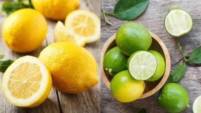 Apakah Jeruk Nipis Dapat Menggantikan Buah Lemon?