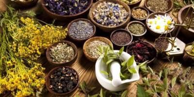 Obat Segala Penyakit, Ini Dia Manfaat Tanaman Herbal