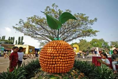 Tempat Wisata Di Bogor untuk Anak