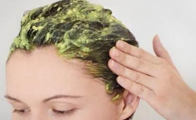 Manfaat Alpukat untuk Rambut