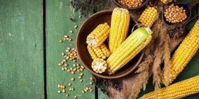 Makanan Tradisional dari Jagung
