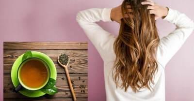 Ragam Manfaat Teh Hijau untuk Rambut, Bisa Atasi Kebotakan Loh!