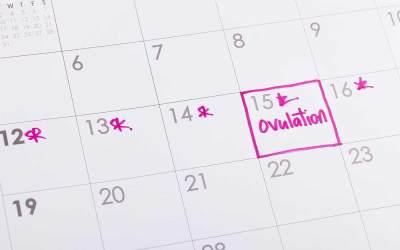 Tanpa KB, Kalender Menstruasi Bisa Jadi Cara Menunda Kehamilan Alami