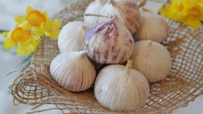 Manfaat Bawang Putih Tunggal & Cara Mengonsumsinya