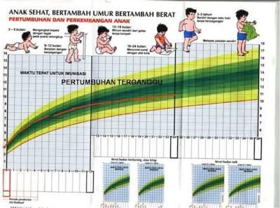 Tabel Berat Badan Ideal Anak