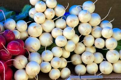 Manfaat Lobak Putih untuk Mencegah Sel Kanker