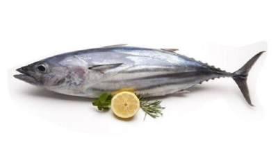 Siomay Ikan Tongkol