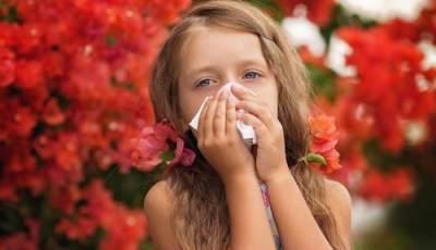 1. Alergi Dingin dan Debu
