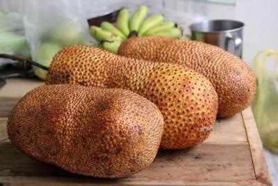 Mirip Durian, Bolehkah Ibu Hamil Makan Buah Cempedak?