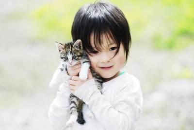 Si Kecil Suka Bermain dengan Kucing? Kenali Bahaya Kutu Kucing dan Cara Mengatasinya