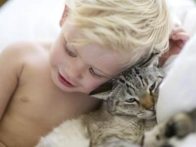 Cara Mengatasi Gigitan Kutu Kucing