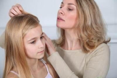 Tahukah Moms? Daun Nangka Belanda Bisa Hilangkan Kutu Rambut dan Ketombe Loh!
