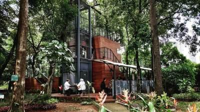4. Arborea Cafe