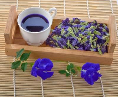 Manfaat Bunga Telang untuk Kuliner