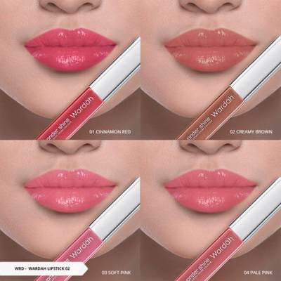 Wardah Wondershine Glossy