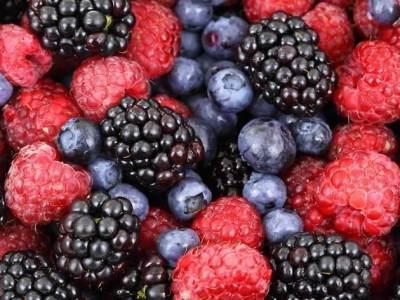 Buah Berry
