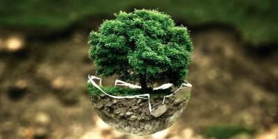 5 Hal Kecil yang Bisa Kita Lakukan untuk Merayakan Hari Bumi