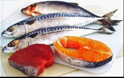 Ikan Salmon Dan Tuna