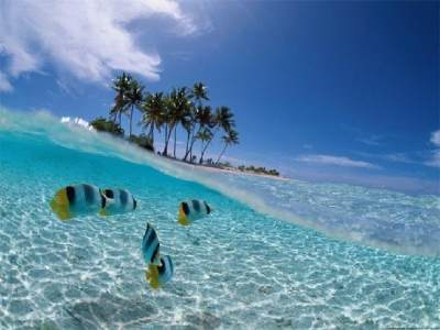 Dari Snorkeling Sampai Honeymoon, Ini Pilihan Wisata Menarik di Pulau Seribu