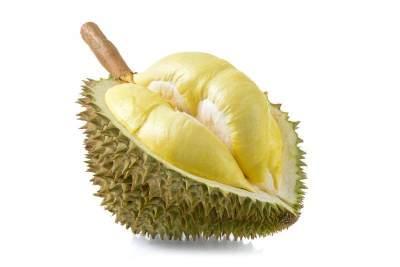 Bahan Utama Tempoyak Durian